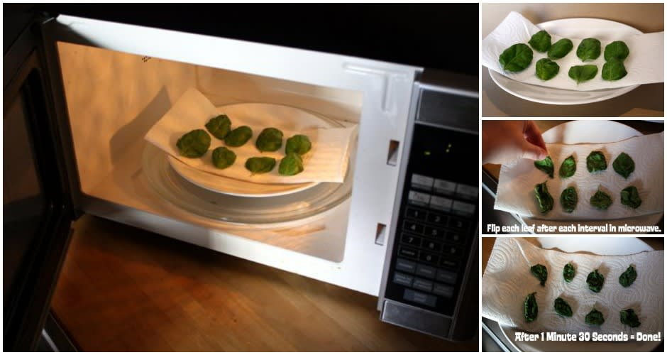 15 microwave tricks and recipes that will change your life first works when it comes to drying ingredients like herbs we automatically think of an oven but maybe what we should be thinking about is the microwave forumfinder Image collections