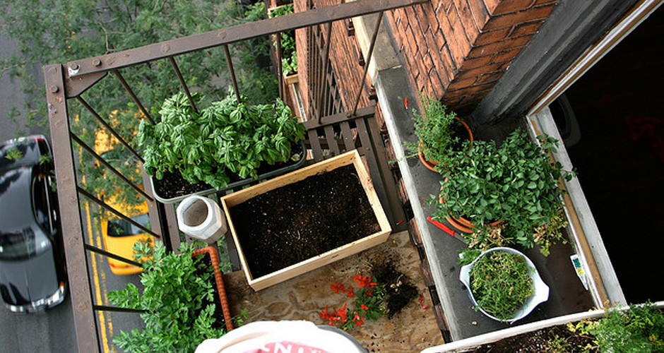 Garden Design: Garden Design with Apartment Gardening Ideas Double ...